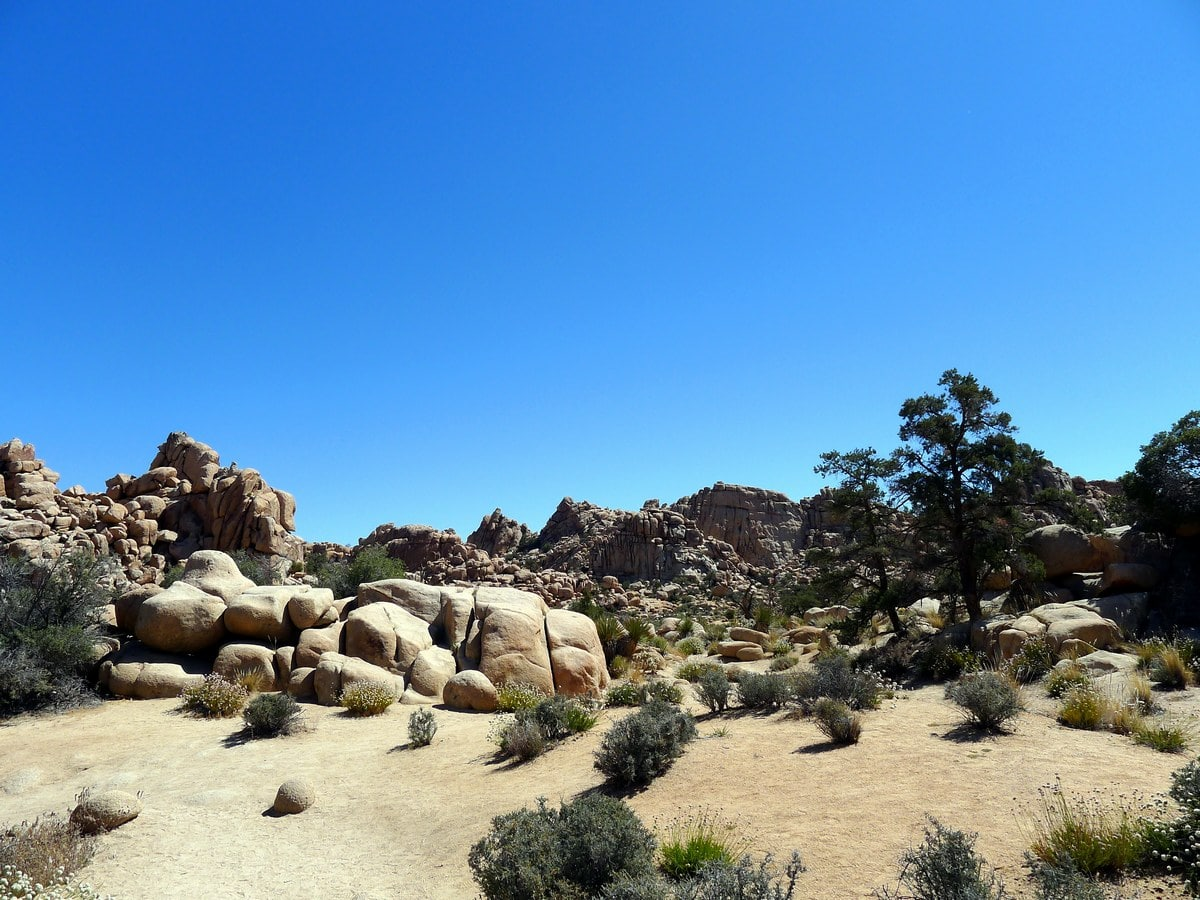 Looking back from the Hidden Valley Loop Hike in Joshua Tree National Park, California