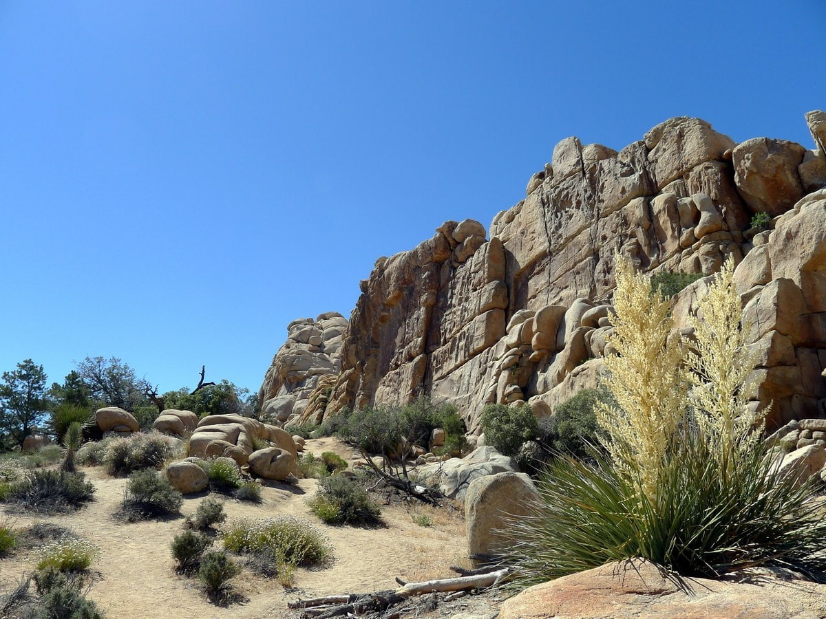 Crags of monzogranite rock from the Hidden Valley Loop Hike in Joshua Tree National Park, California