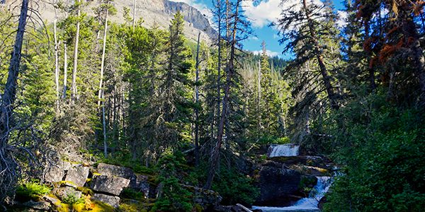 St Mary and Virginia Falls hike in Glacier National Park, Montana