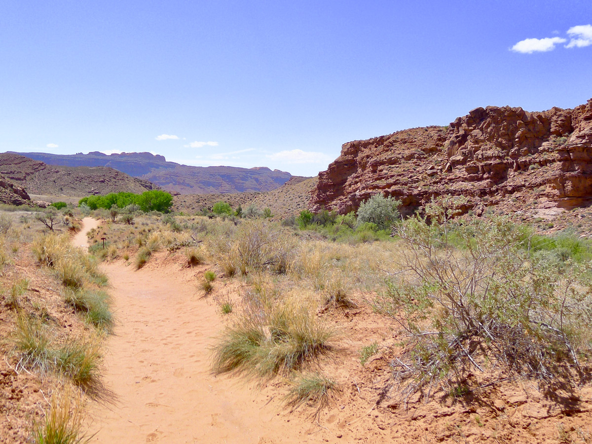 Mill Creek hike in Moab is surrounded by beautiful landscapes