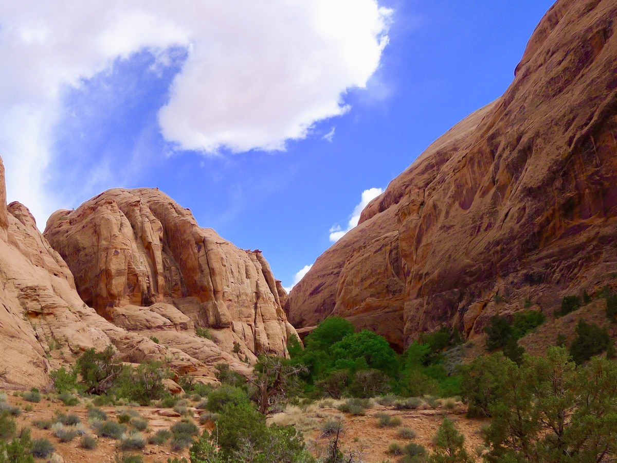 Grandstaff Trail hike in Moab is surrounded by beautiful scenery