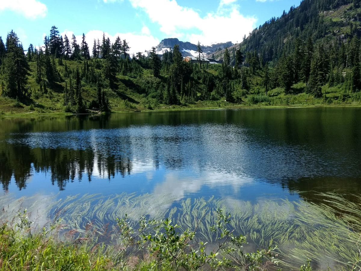 Table mountain in the distance on the Picture Lake Hike near Mt Baker, Washington