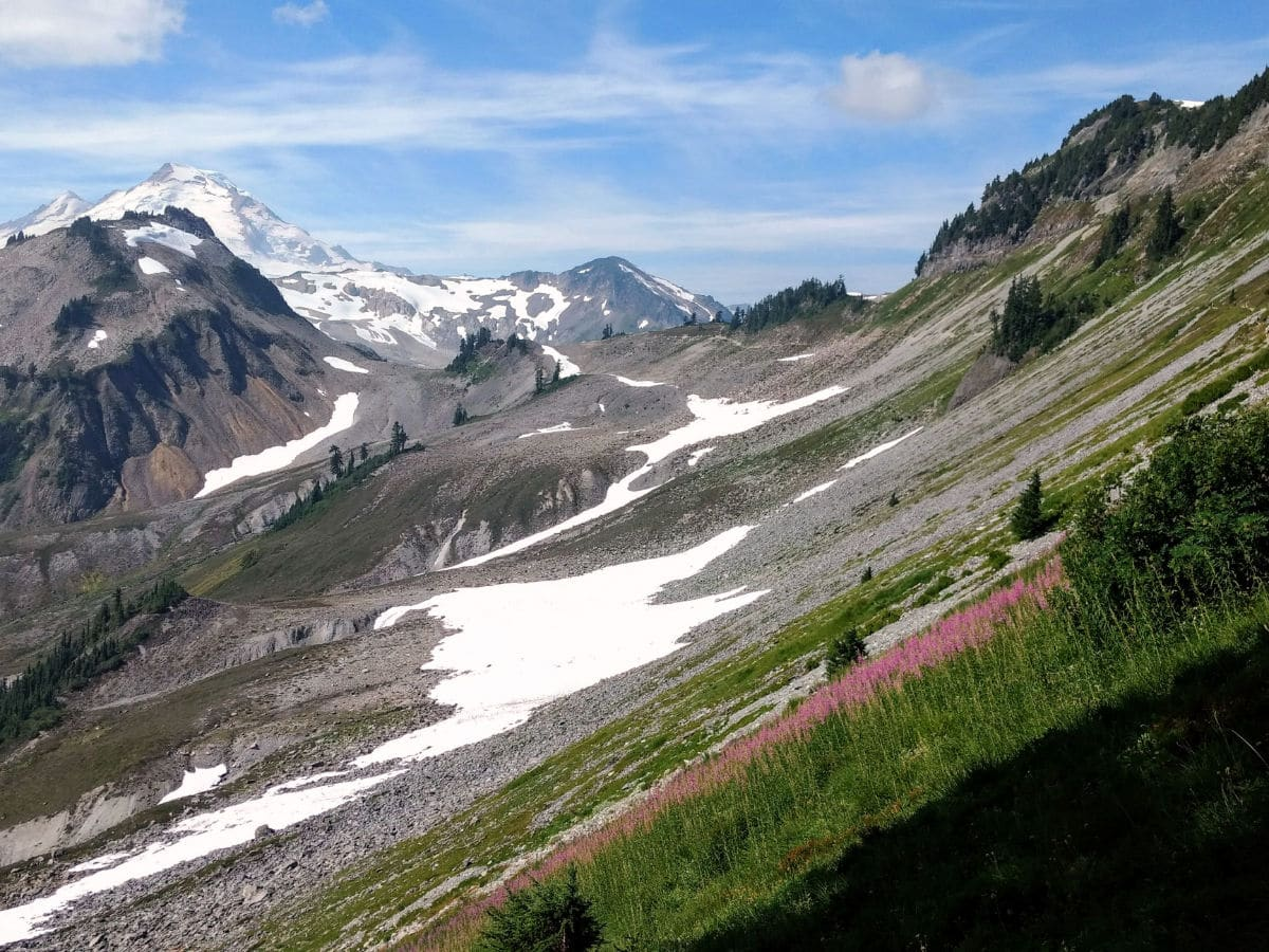 Mount Baker from Chain Lakes trail on the Yellow Ptarmigan Ridge Hike near Mt Baker, Washington