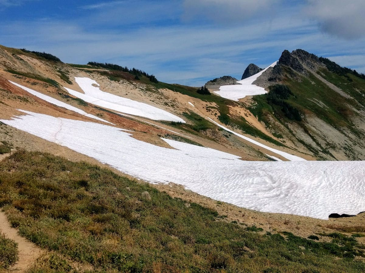 Snowfield near Coleman Pinnacle on the Yellow Ptarmigan Ridge Hike near Mt Baker, Washington