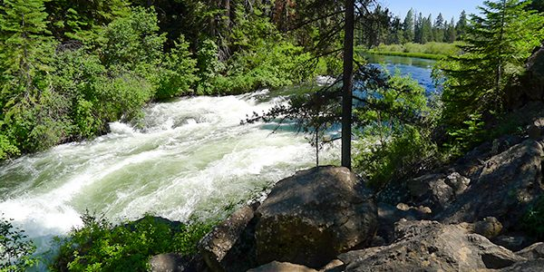 Scenery from the Benham Falls hike near Bend, Oregon