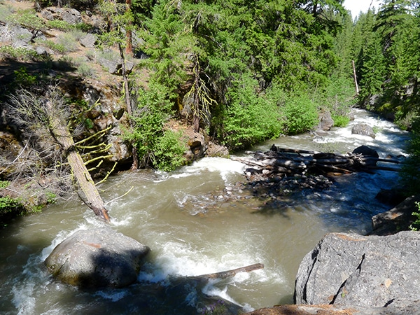 Whychus Creek Trail hike around Bend, Oregon