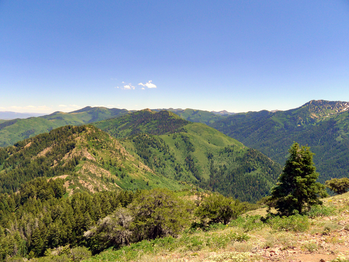 View along the ridgeline on Mt. Aire hike in Salt Lake City