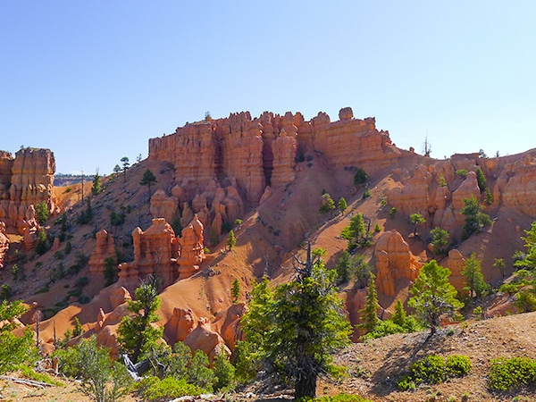 Scenery from the Golden Wall hike in Bryce Canyon National Park, Utah