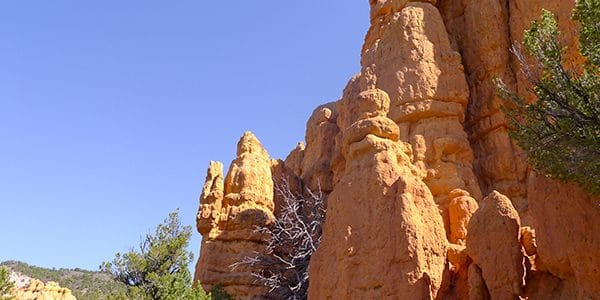 Scenery from the Hoodoo Trail hike in Bryce Canyon National Park, Utah
