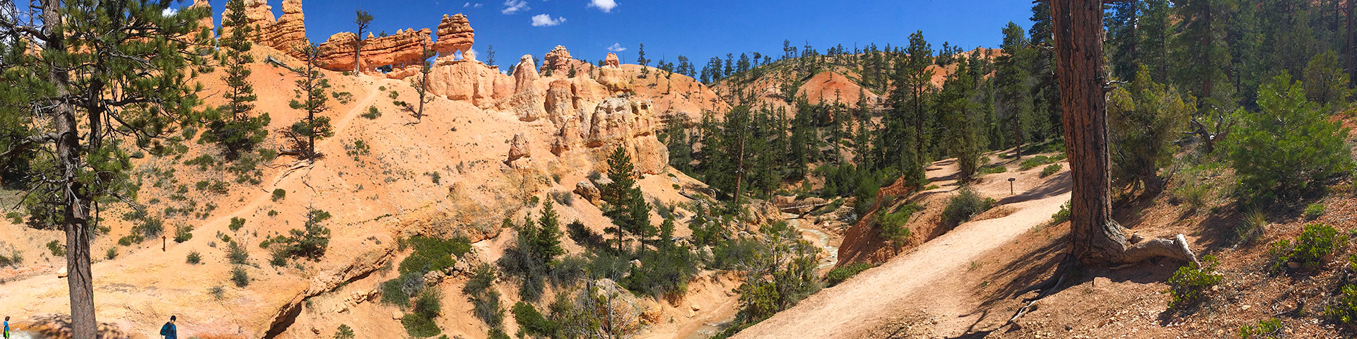 Views from the Mossy Caves hike in Bryce Canyon National Park, Utah