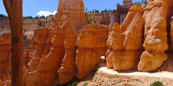 Trail of the Queens Garden to Navajo Loop Trail hike in Bryce Canyon National Park, Utah