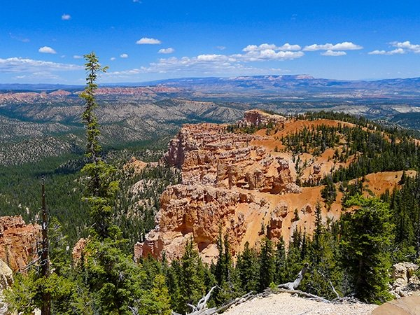 Hike the Riggs Spring Loop Trail in Bryce Canyon