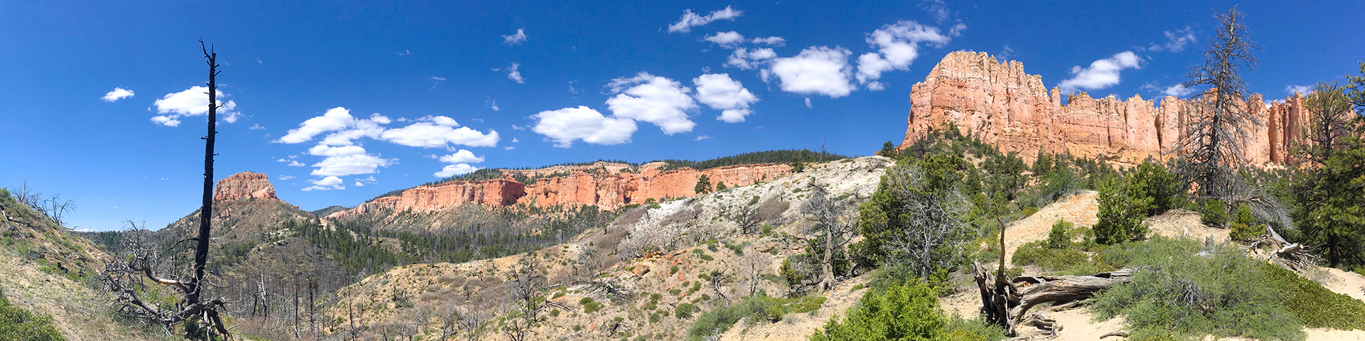 Panorama from the Swamp Canyon Loop hike in Bryce Canyon National Park, Utah