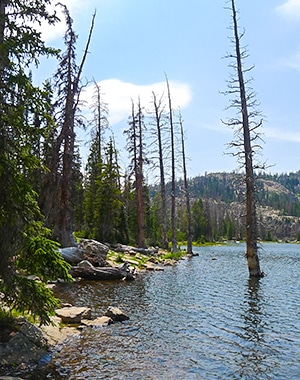 Views from the Notch Lake hike in the Uinta Mountains, Utah