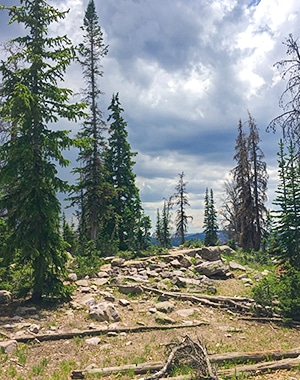 Panorama from the Packard Lake hike in the Uinta Mountains