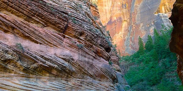 Views from the Observation Point hike in Zion National Park