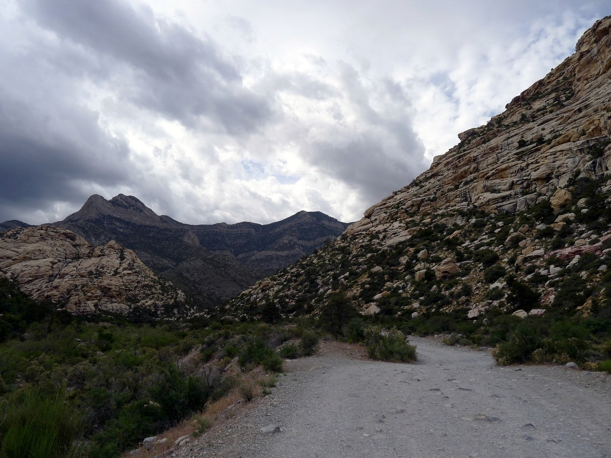 Beginning of the trail on the La Madre Springs Hike near Las Vegas