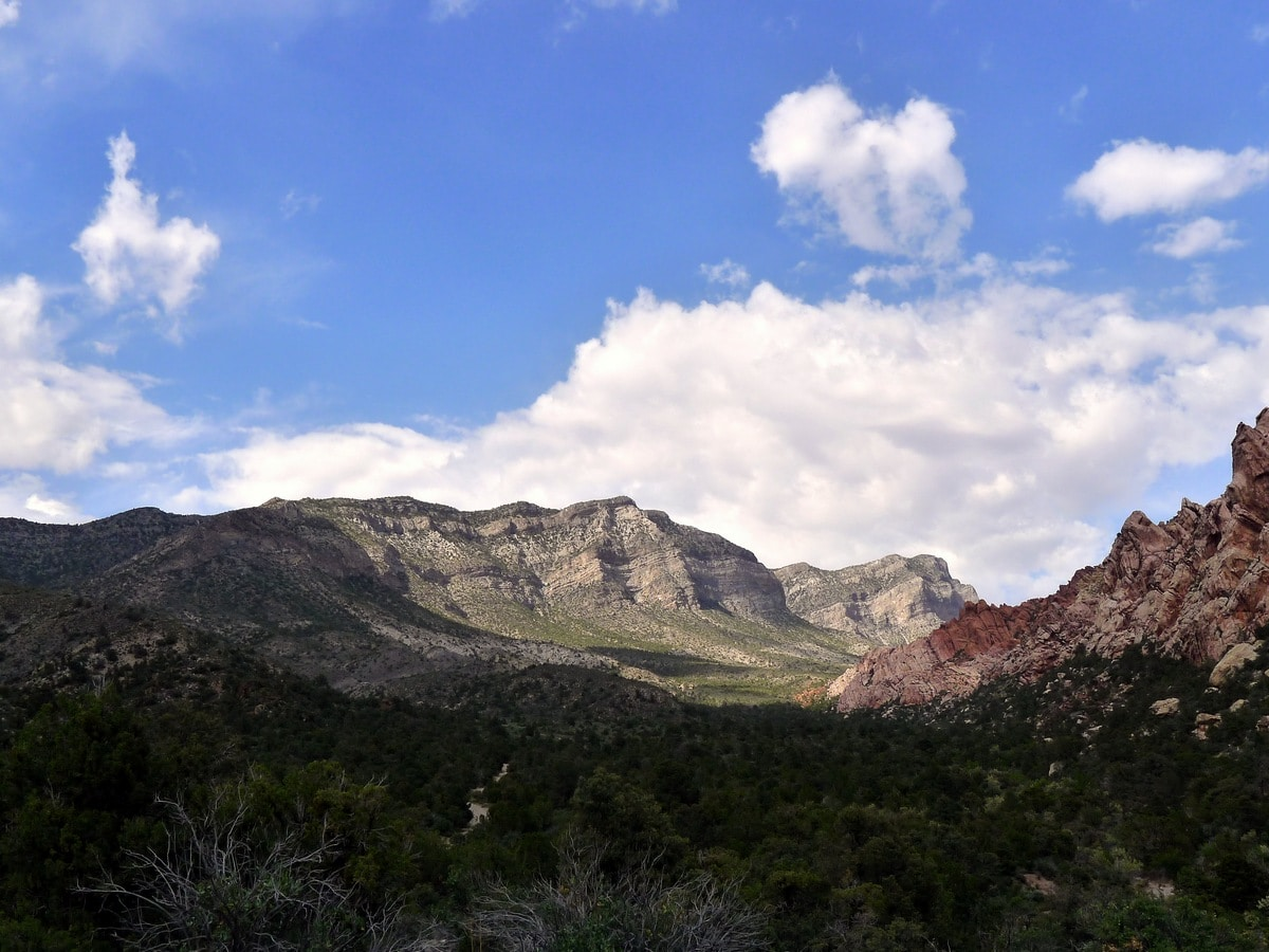 Looking towards the mountains from the La Madre Springs Hike near Las Vegas