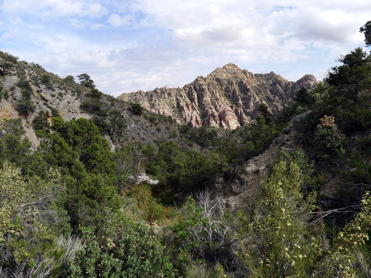 View from the ravine on the La Madre Springs Hike near Las Vegas