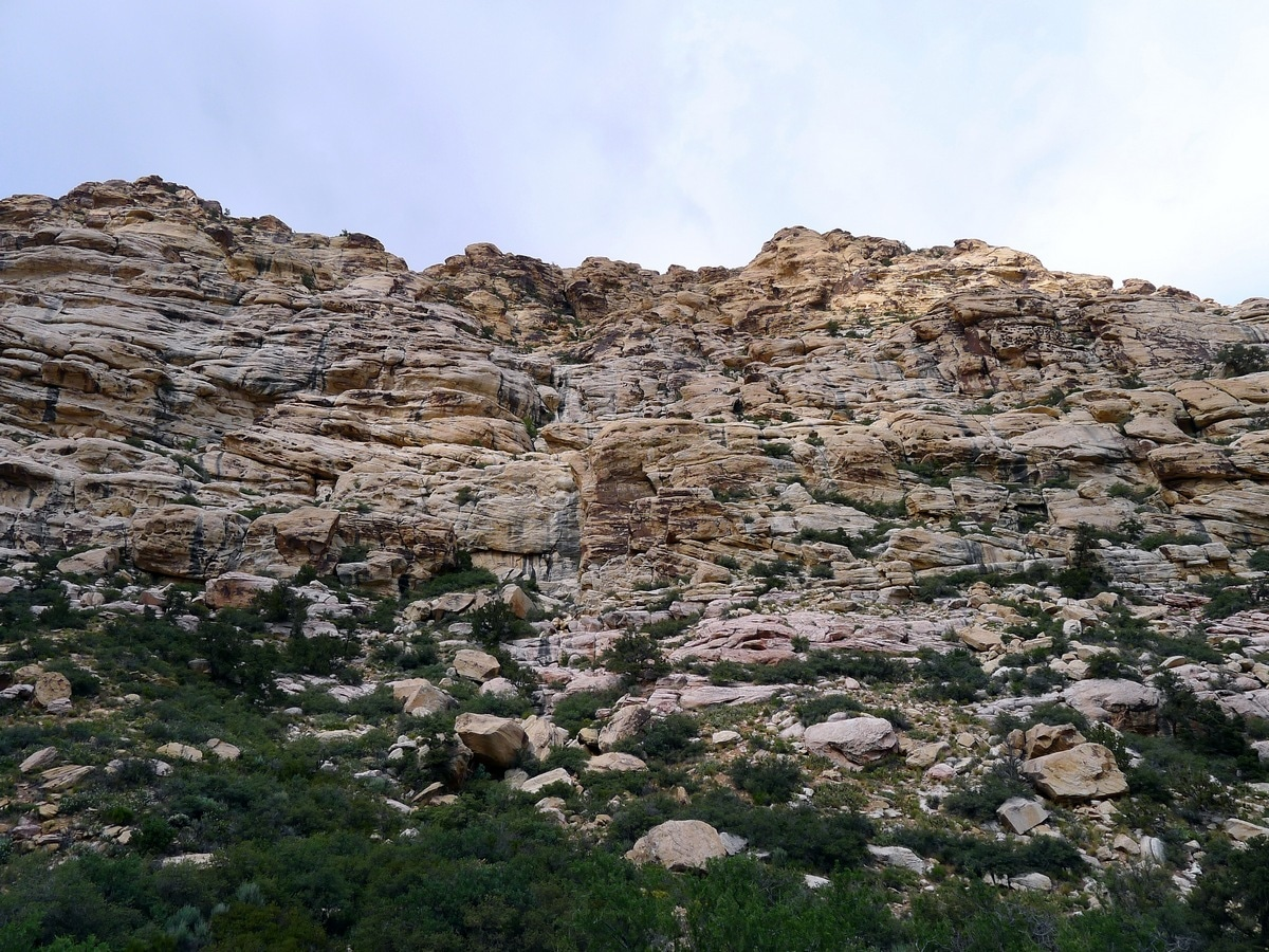 Rock formations on canyon walls from the La Madre Springs Hike near Las Vegas