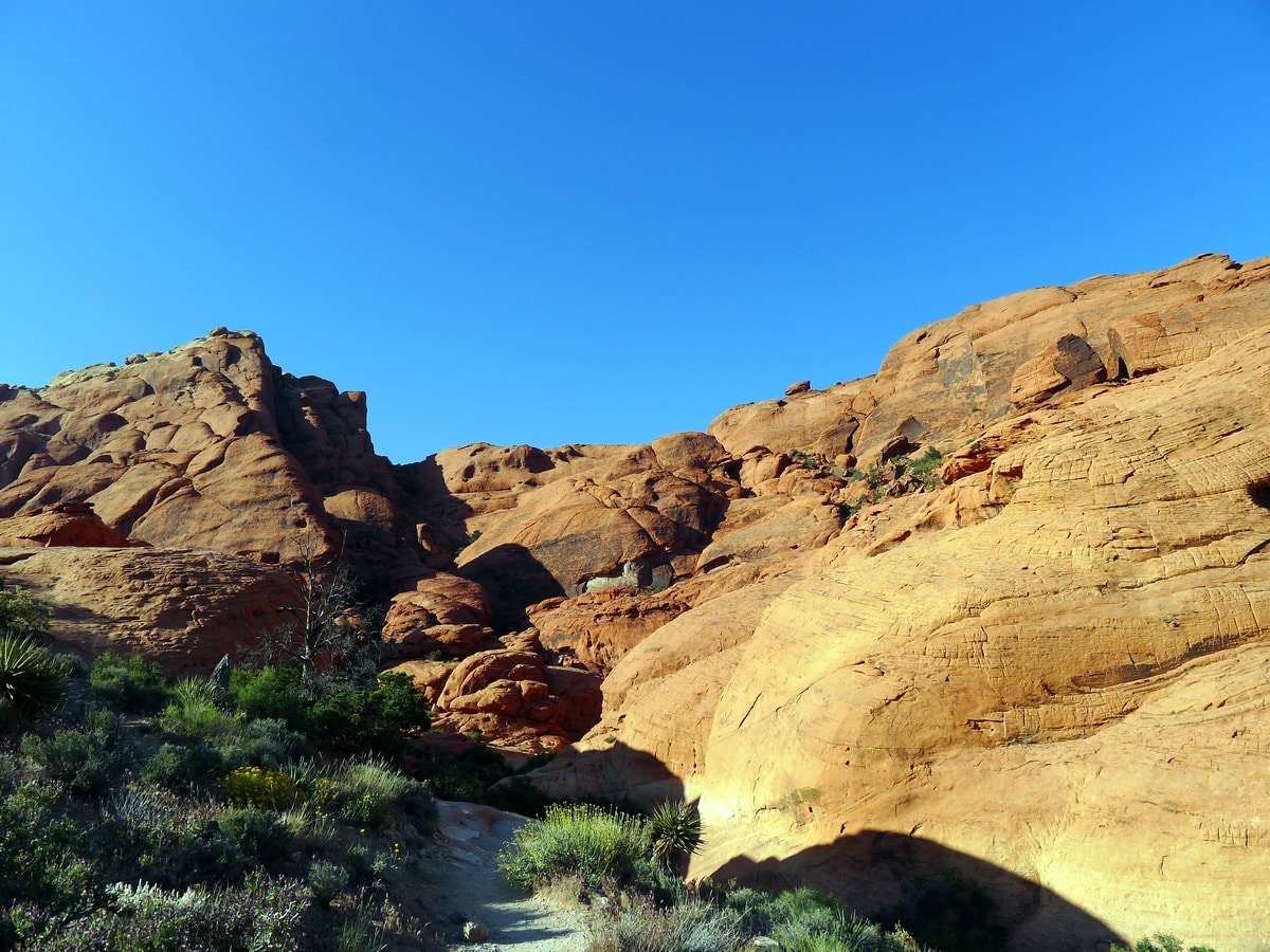 Canyon you can climb into on the Calico Hills Loop Hike in Red Rock Canyon near Las Vegas