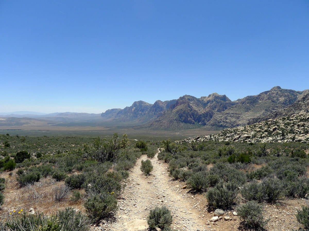 Beautiful trail of the White Rock Trail Hike in Red Rock Canyon near Las Vegas