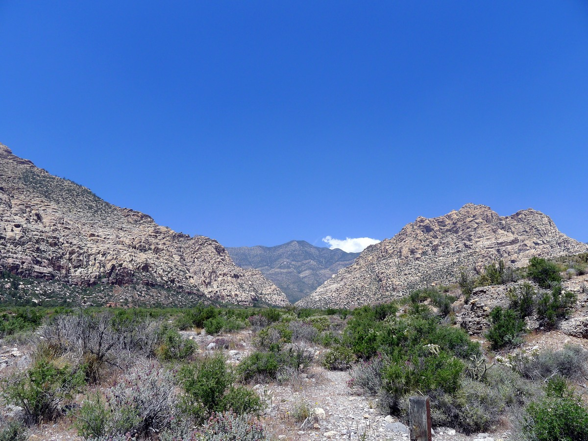 Looking north along the desert plateau at the Icebox Canyon Hike near Las Vegas
