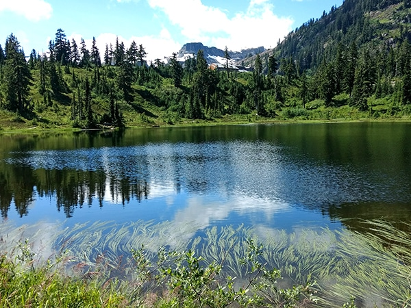Views from the Picture Lake hike in Mt. Baker-Snoqualmie National Forest