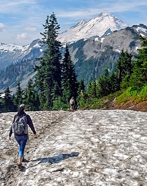 Scenery from the Ptarmigan Ridge hike in Mt. Baker-Snoqualmie National Forest