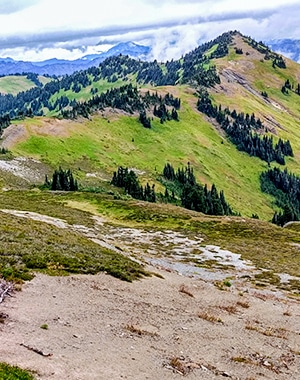 Views from the Skyline Divide Trail near Mt. Baker in Washington