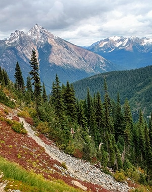 Trail of the Easy Pass hike in North Cascades National Park