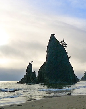 Views from the Hole in the Wall Hike in Olympic National Park, Washington