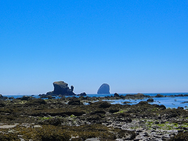 Views on the Ozette Triangle hike in Olympic National Park, Washington