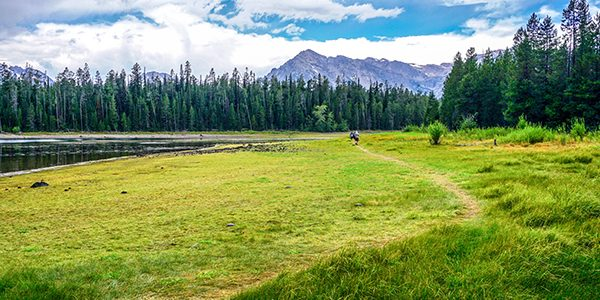Trail of the Colter Bay Hike in Grand Tetons