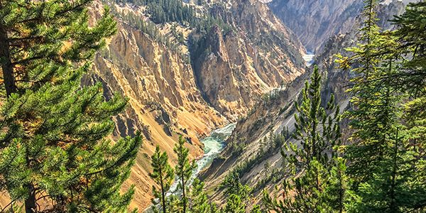 Views from the South Rim Hike in Yellowstone National Park