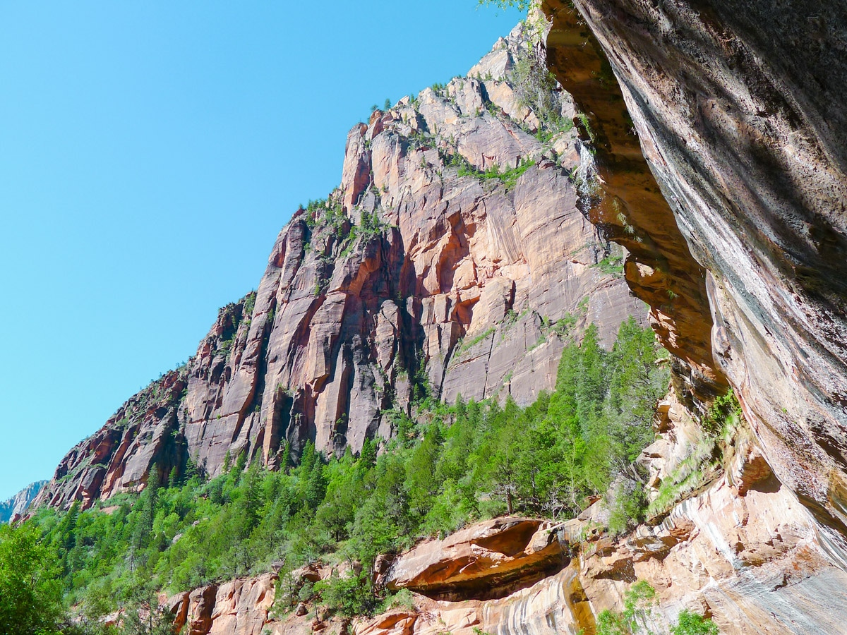Emerald Pools hike in Zion National Park is a lovely trail in Utah