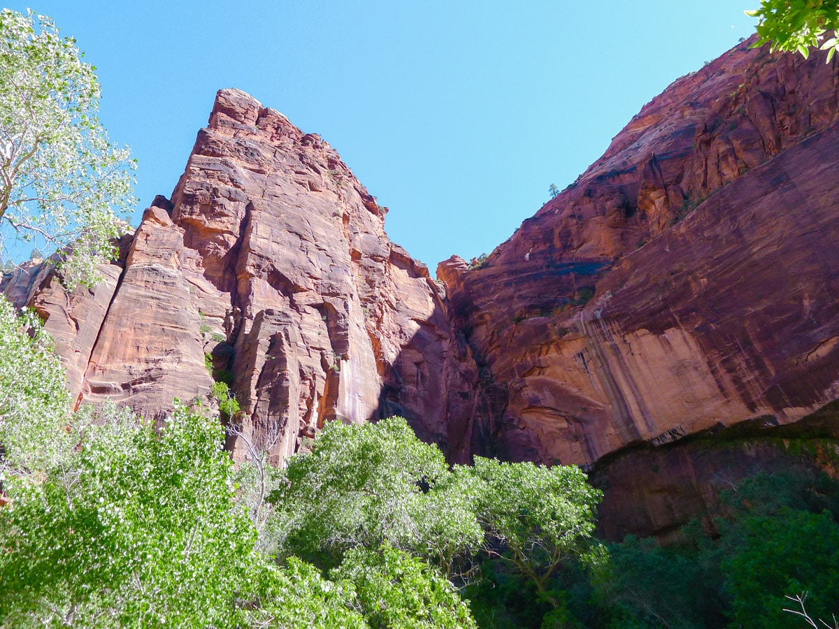 View of the Cliffs of Zion on the Emerald Pools hike in Zion National Park