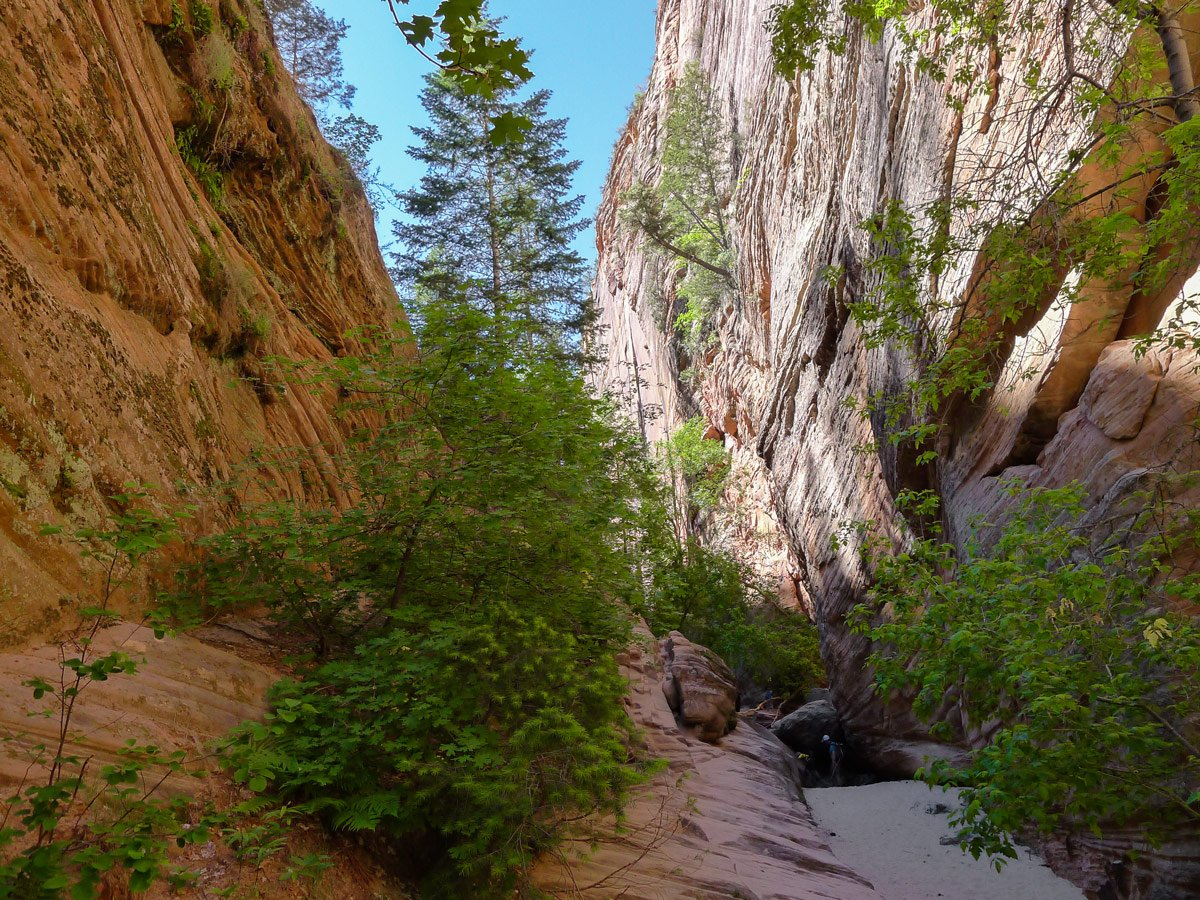 Slot canyon view on Hidden Canyon hike in Zion National Park, Utah
