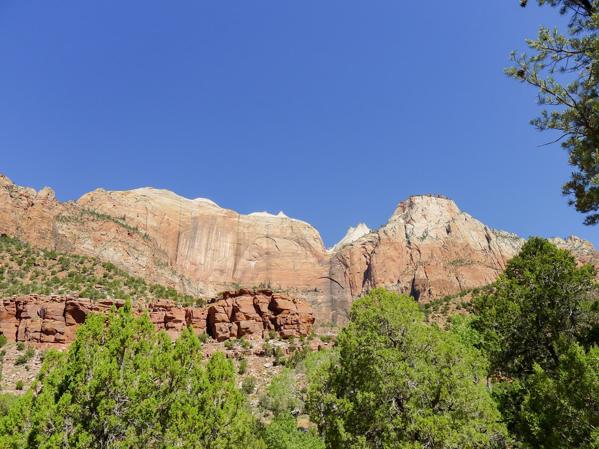 Canyon walls along Pa'rus River Trail hike in Zion National Park