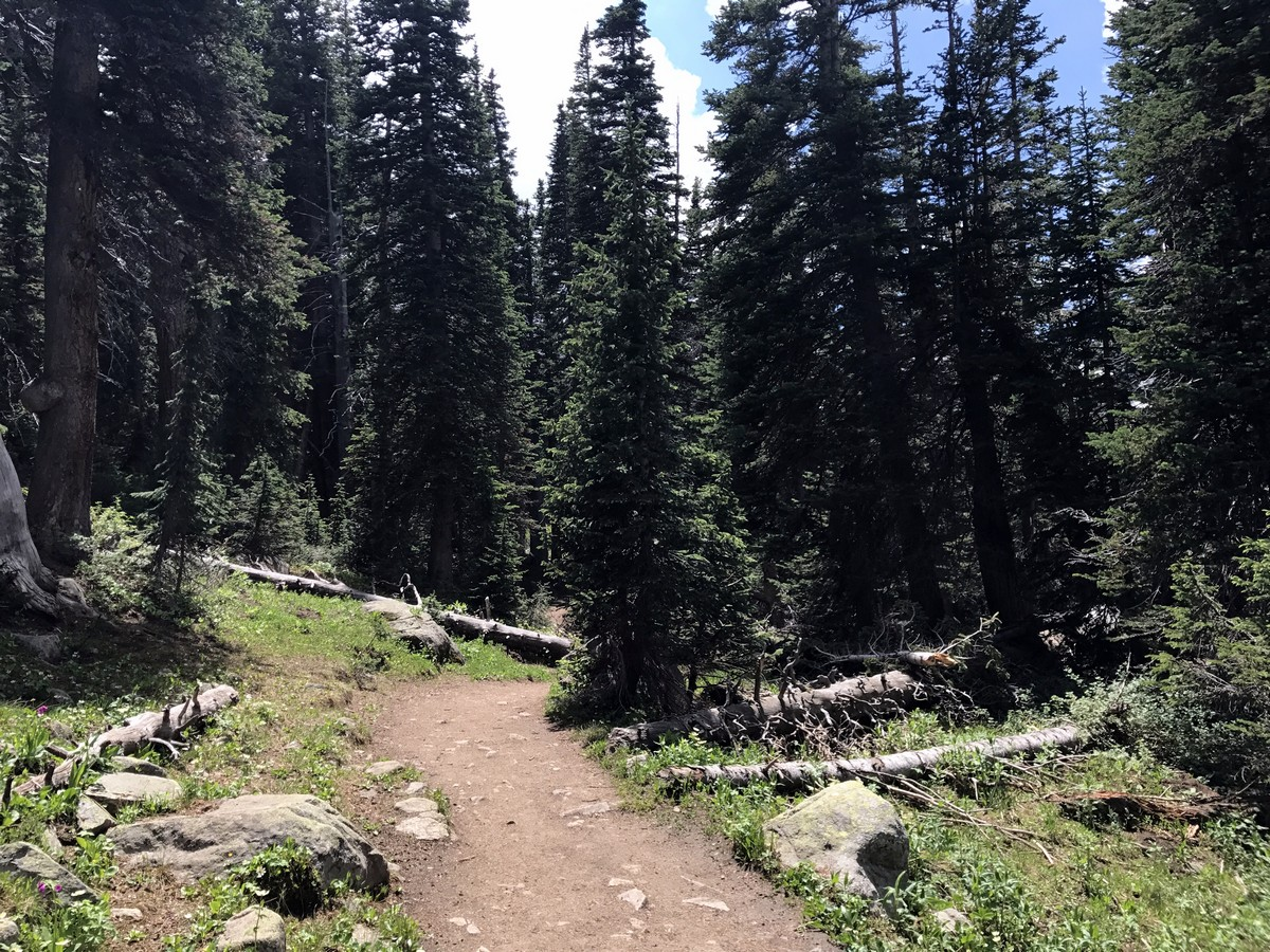 Scenery of the Long Lake Trail Hike in Indian Peaks, Colorado