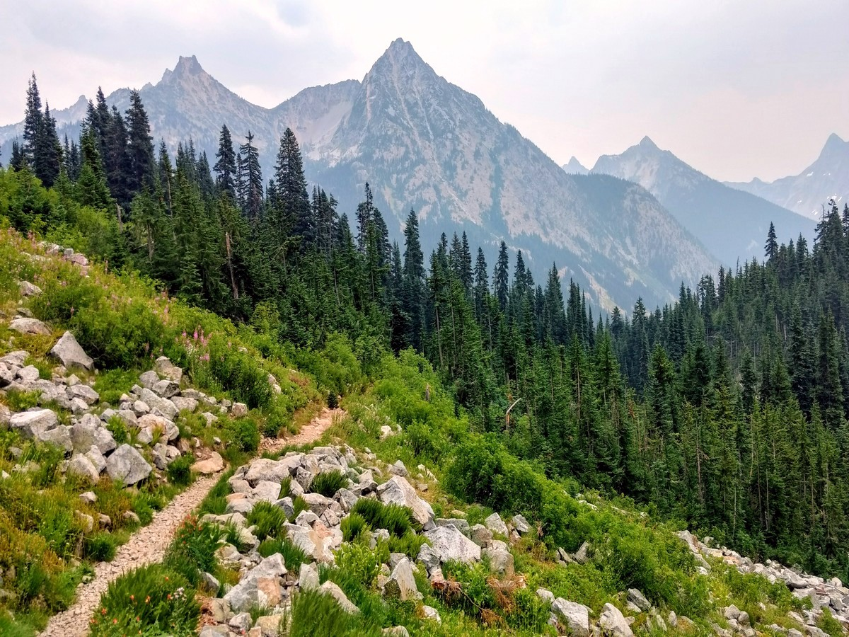 You can see Cutthroat Peak and Whistler Mountain from the Maple Pass Loop in North Cascades