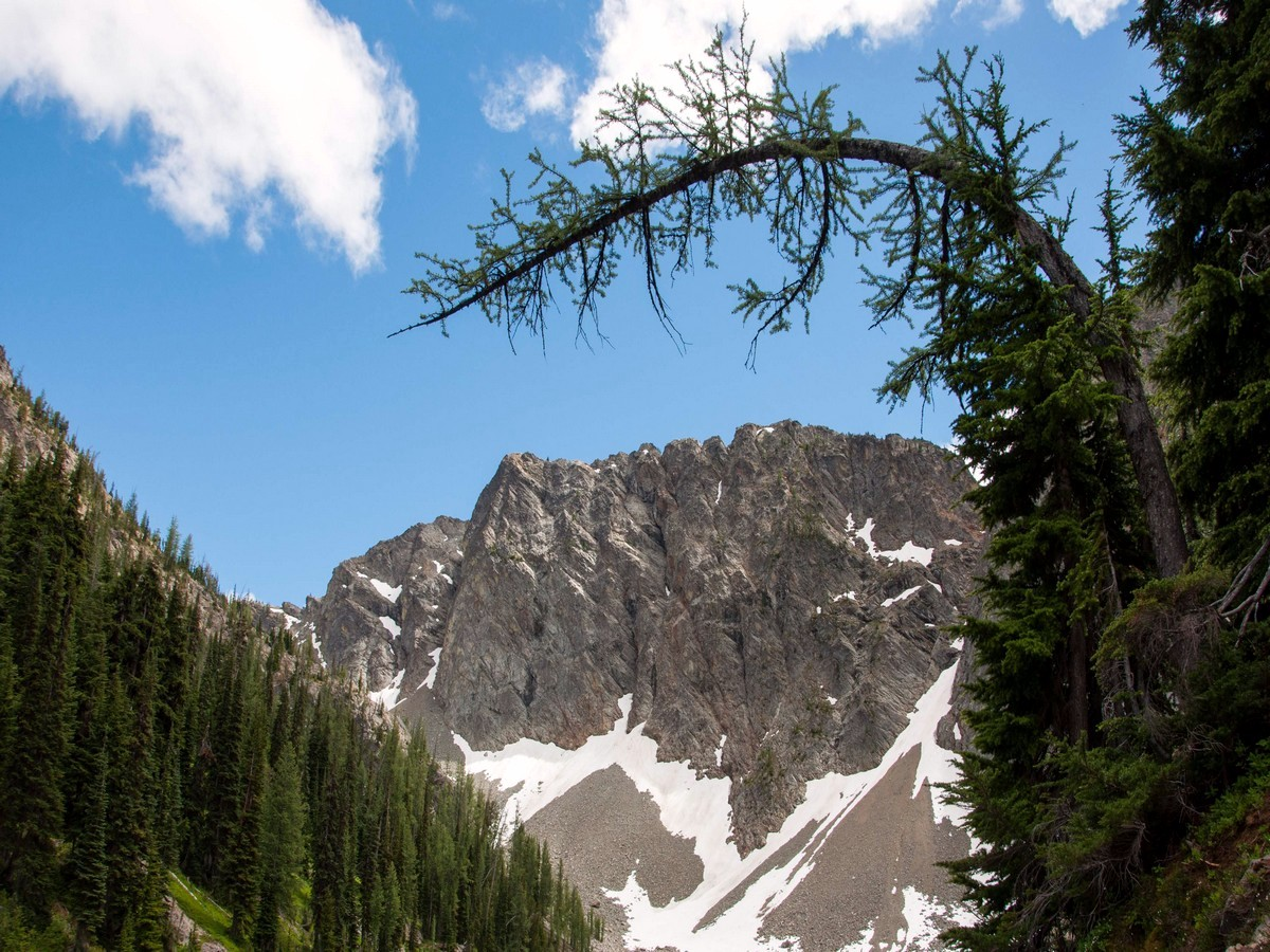 Arch over the Blue Lake trail in North Cascades, Washington