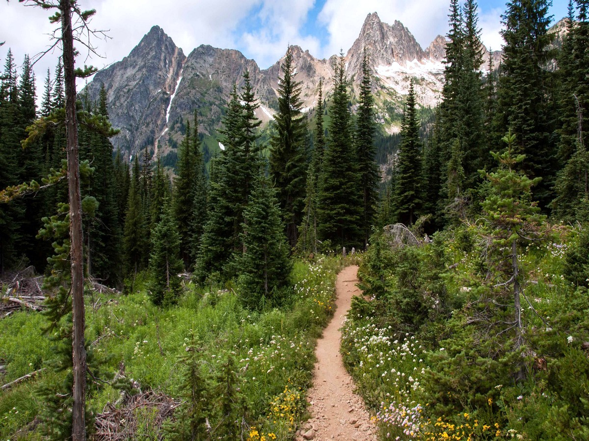 Trail back from the Blue Lake Hike in North Cascades, Washington