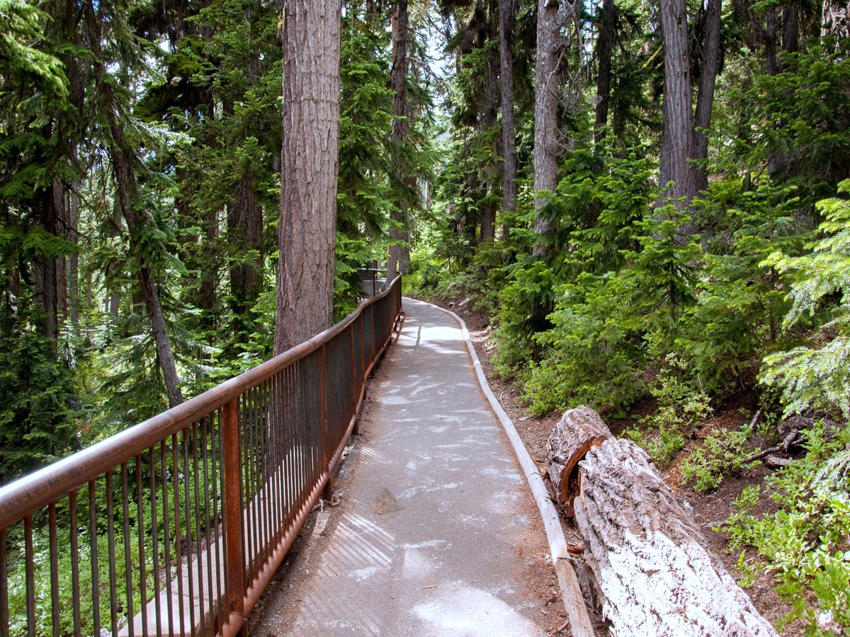 Paved path to overlook on Washington Pass in North Cascades