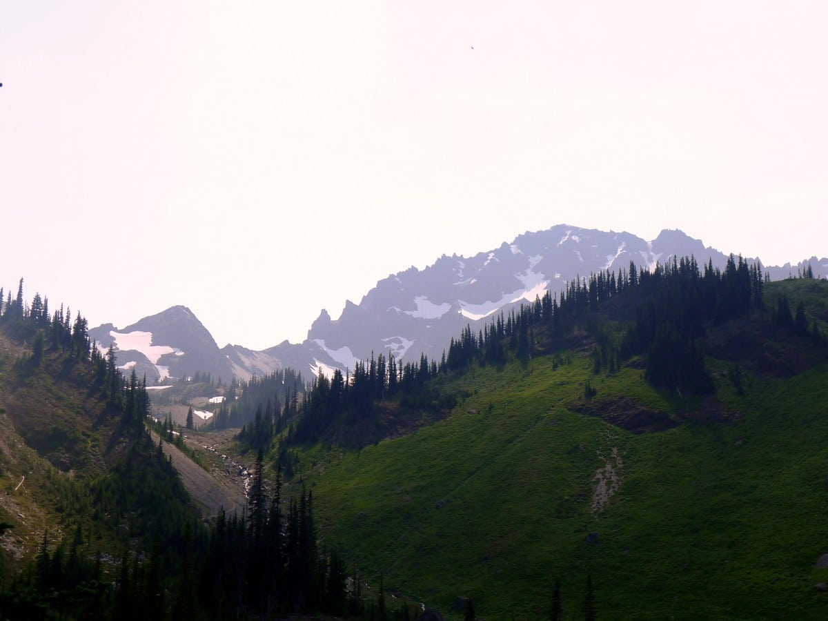 Looking up before the final climb to the Royal Basin hike in Olympic National Park