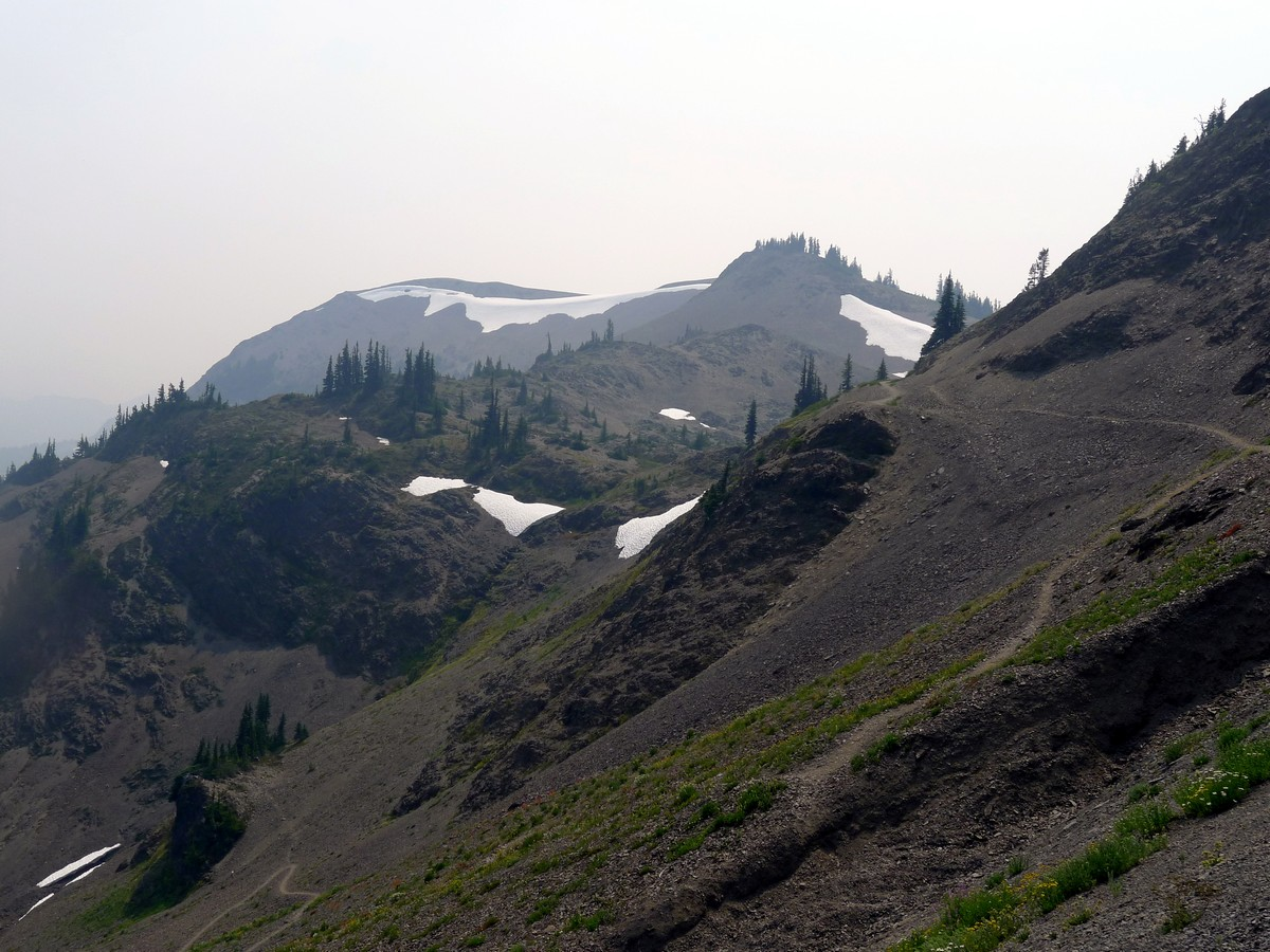 The trail of the Obstruction Point Hike in Olympic National Park, Washington