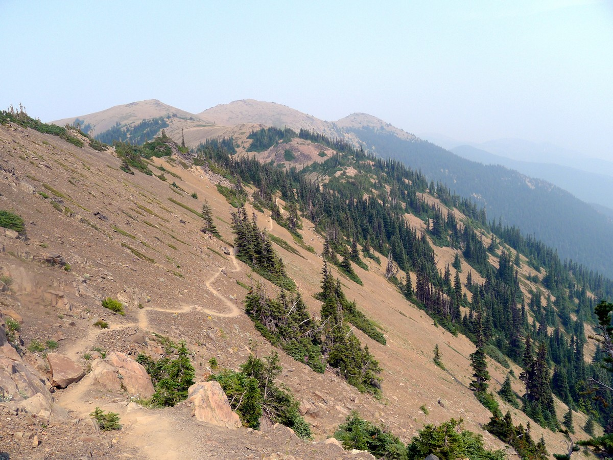 Beautiful descent of the Obstruction Point Hike in Olympic National Park, Washington