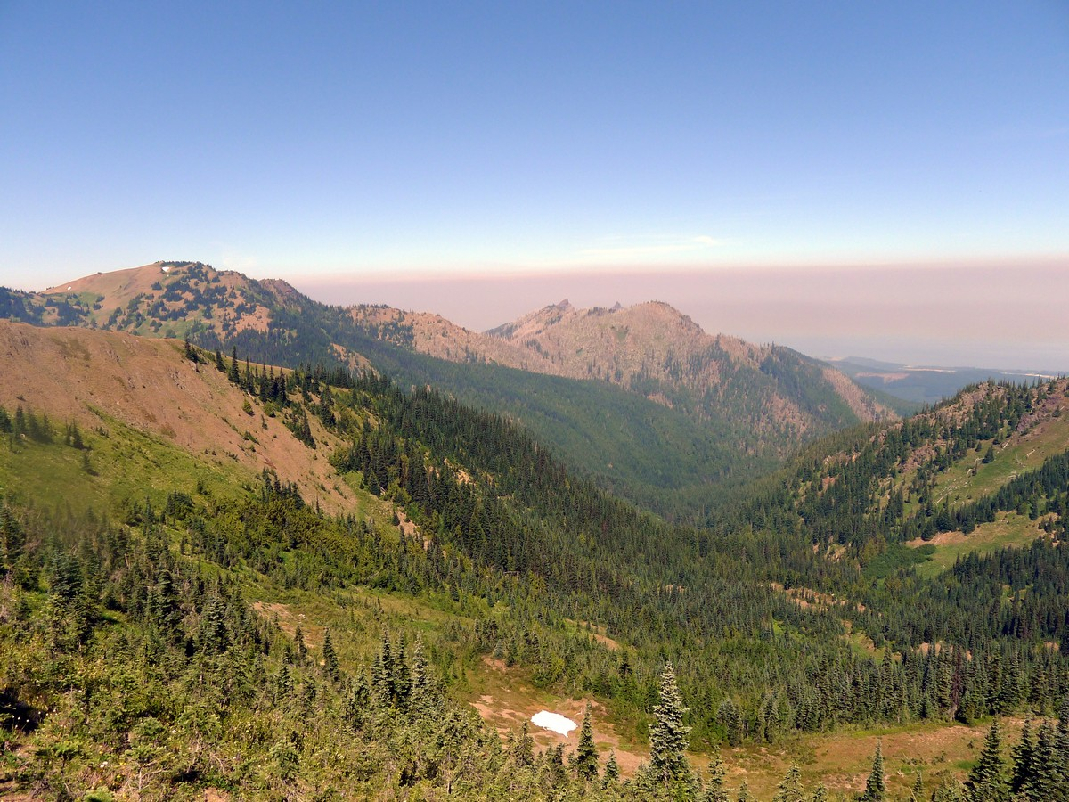 Looking north from the Klahhane Ridge Hike in Olympic National Park