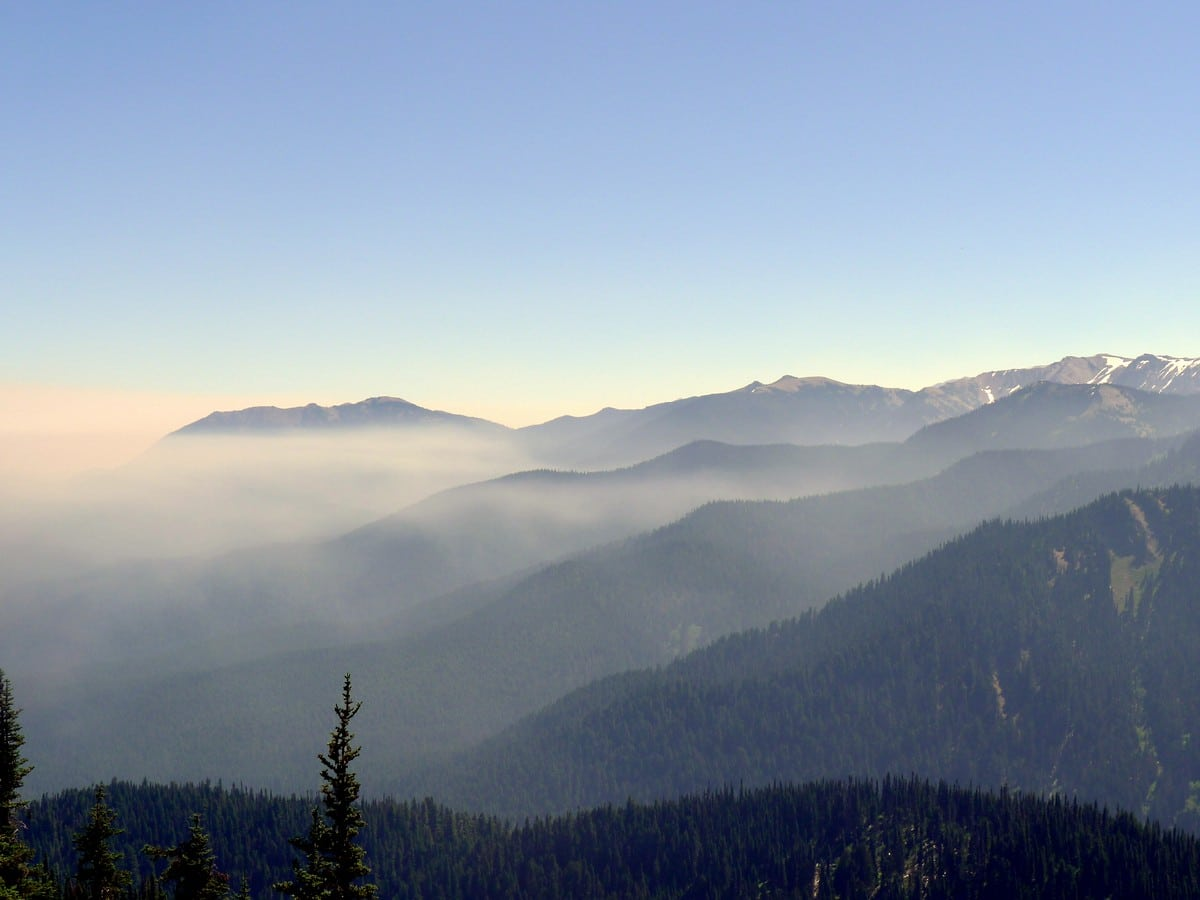 Views from the Klahhane Ridge Hike in Olympic National Park