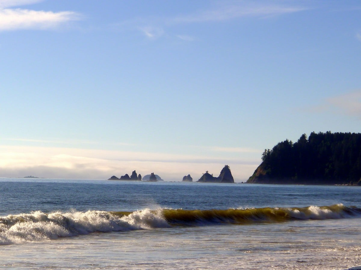 Looking north along Rialto Beach on the Hole in the Wall Hike in Olympic National Park